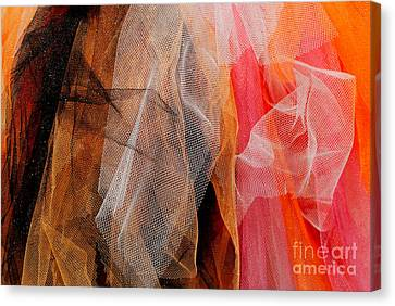 Faux Lace Canvas Print by Andrea Simon