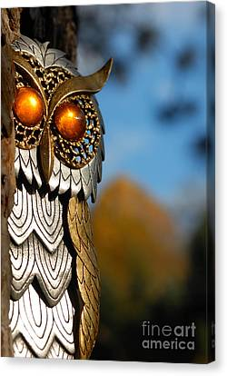 Costume Canvas Print - Faux Owl With Golden Eyes by Amy Cicconi