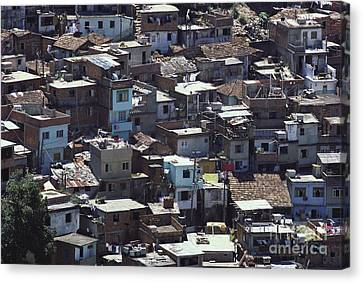 Favela In Rio De Janeiro Canvas Print by Tim Holt