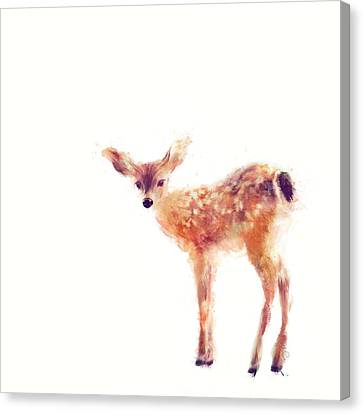 Fauna Canvas Print - Fawn by Amy Hamilton