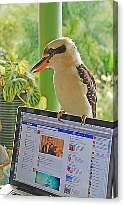 Feathered Facebook Fan Canvas Print