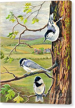 Feathered Friends Canvas Print by Marilyn Smith