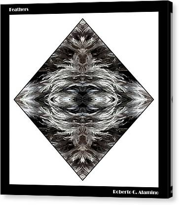 Feathers Canvas Print by Roberto Alamino