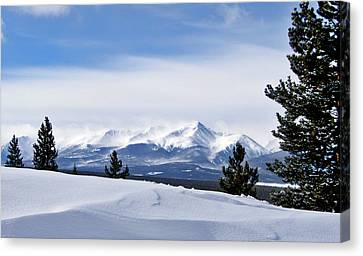 February Wind Canvas Print