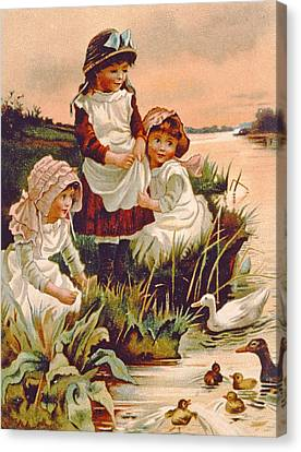 Ducklings Canvas Print - Feeding Ducks by Edith S Berkeley