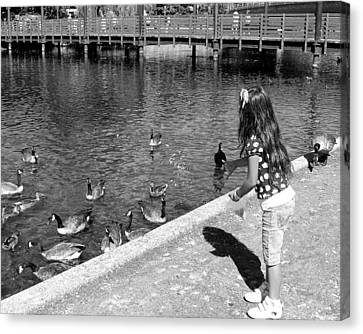 Canvas Print featuring the photograph Feeding The Birds by Heidi Manly