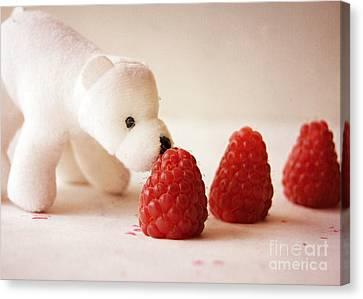 Feeding The Polar Bear I Canvas Print