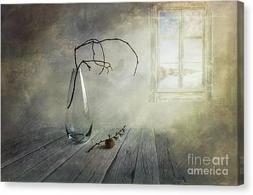 Harmonious Canvas Print - Feel A Little Spring by Veikko Suikkanen