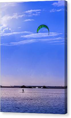 Sea Weed Canvas Print - Feeling Free by Marvin Spates