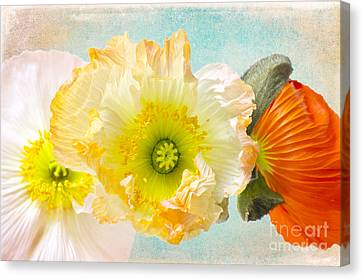 Feeling Of Summer Canvas Print by Angela Doelling AD DESIGN Photo and PhotoArt