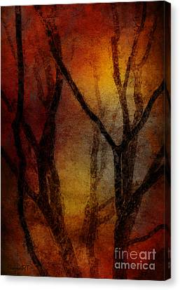 Feelings Canvas Print by Donika Nikova