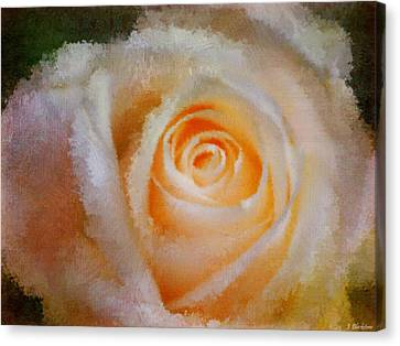 Feelings Of Flowers - Image Art Canvas Print by Jordan Blackstone