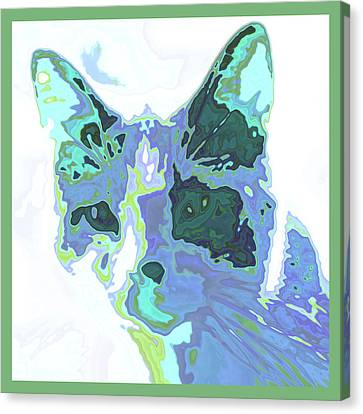 Feline Abstraction Canvas Print by Tom Druin