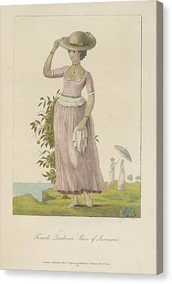 Female Quadroon Canvas Print by British Library