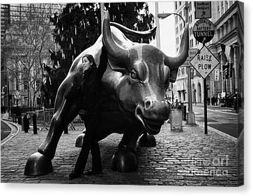 Manhatten Canvas Print - female tourist at Charging Bull statue bronze sculpture bowling green park new york city by Joe Fox