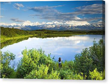 Female Tourist Viewing Mt Mckinley From Canvas Print by Michael DeYoung