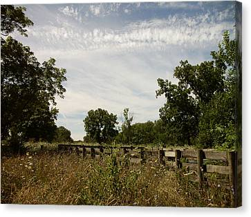 Fence 2 Canvas Print by Cynthia Lassiter