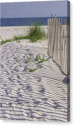 Canvas Print featuring the photograph Fence And Shadow by Jeanne Forsythe