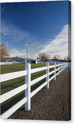 Wine Scene Canvas Print - Fence At A Winery, Rutherford, Wine by Panoramic Images