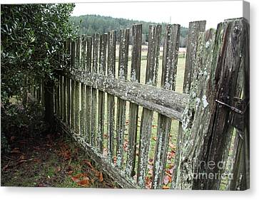 Fence At The Farm Canvas Print by Graham Foulkes