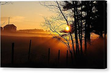 Canvas Print featuring the photograph Fence Line by Paul Noble