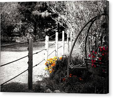 Black And Yellow Canvas Print - Fence Near The Garden by Julie Hamilton