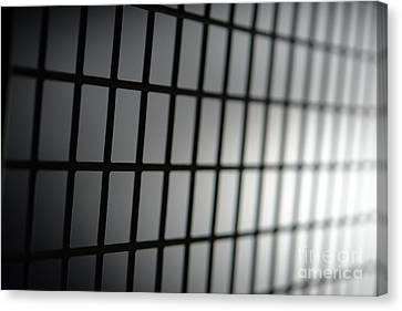 Fence Canvas Print by Olivier Le Queinec