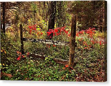 Fence On The Buffalo Canvas Print by Marty Koch