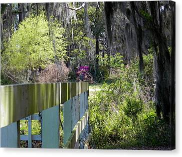 Fence Points The Way Canvas Print by Patricia Greer