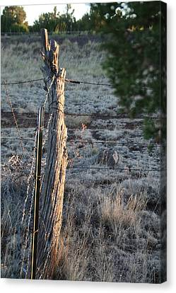 Canvas Print featuring the photograph Fence Post by David S Reynolds