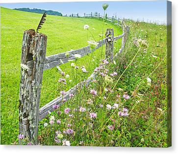 Fence Post Canvas Print by Melinda Fawver