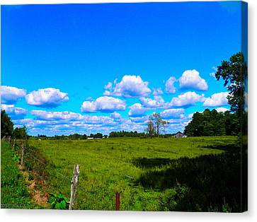 Fence Row And Clouds Canvas Print