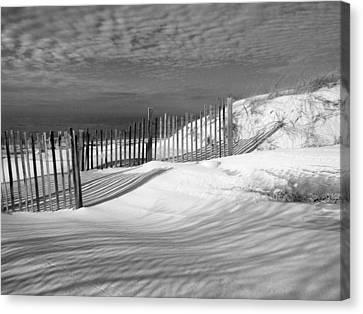 Fence Shadows Canvas Print