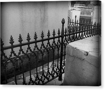 Fenced In Canvas Print by Beth Vincent