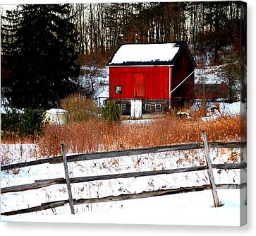 Fenced In  Canvas Print by Mary Beth Landis