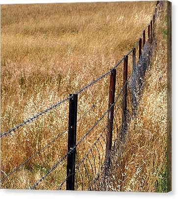 Fenced Off Canvas Print by Kaleidoscopik Photography