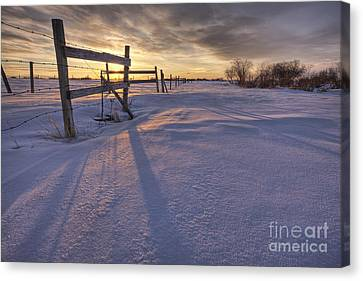 Fenceline At Sunset Canvas Print by Dan Jurak