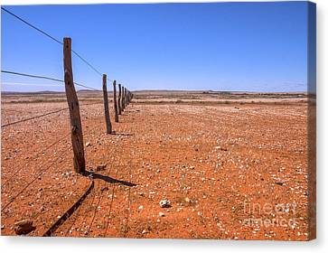 Fenceline Outback Australia Canvas Print by Colin and Linda McKie