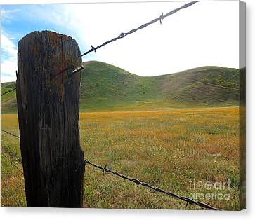 Fencepost On The 58 Canvas Print