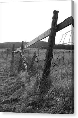 Fences Black And White I Canvas Print