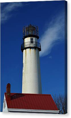 Fenwick Island Light Stands Tall Canvas Print by Bill Swartwout