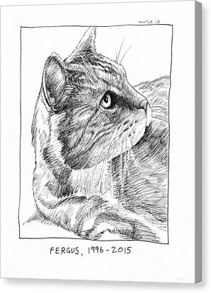 Fergus Canvas Print by Steve Hunter