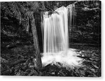 Fern Falls Black And White Canvas Print by Mark Kiver