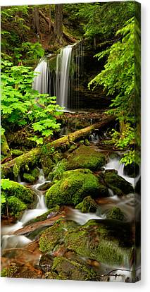 Most Canvas Print - Fern Falls Panoramic by Leland D Howard