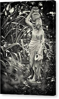 Fetching Water Canvas Print by Patrick M Lynch