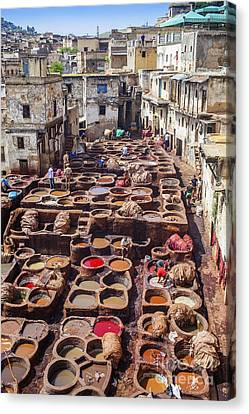 Fez Tannery Canvas Print by Patricia Hofmeester