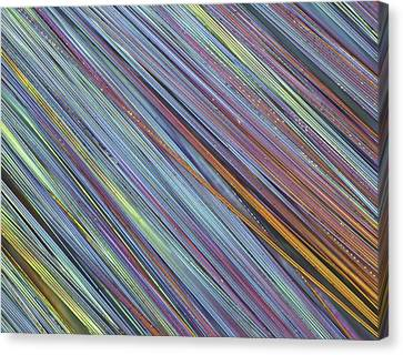 Fibreglass, Light Micrograph Canvas Print by Science Photo Library