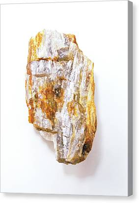 Fibrous Sillimanite Canvas Print by Dorling Kindersley/uig