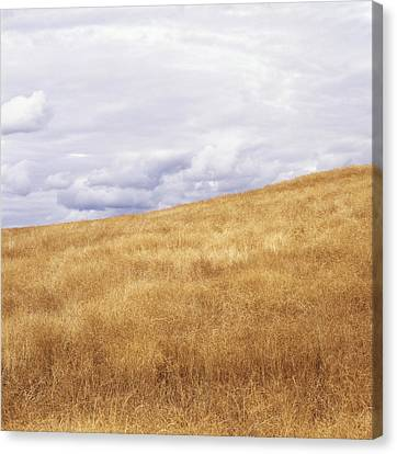 Field And Sky Near Rock Creek, South Canvas Print by Bert Klassen