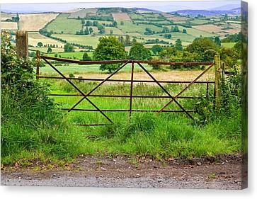 Gatepost Canvas Print - Field Gate South Armagh by Jane McIlroy